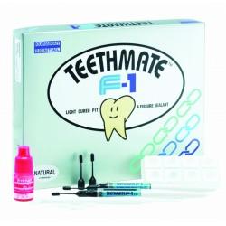 Teeth Mate F-1