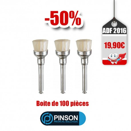 Pinson Brushes